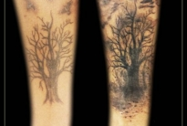 Cover up forest