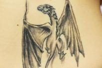 dragon healed